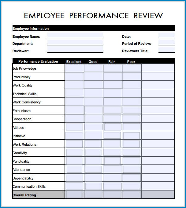 Employee Performance Review Form Example