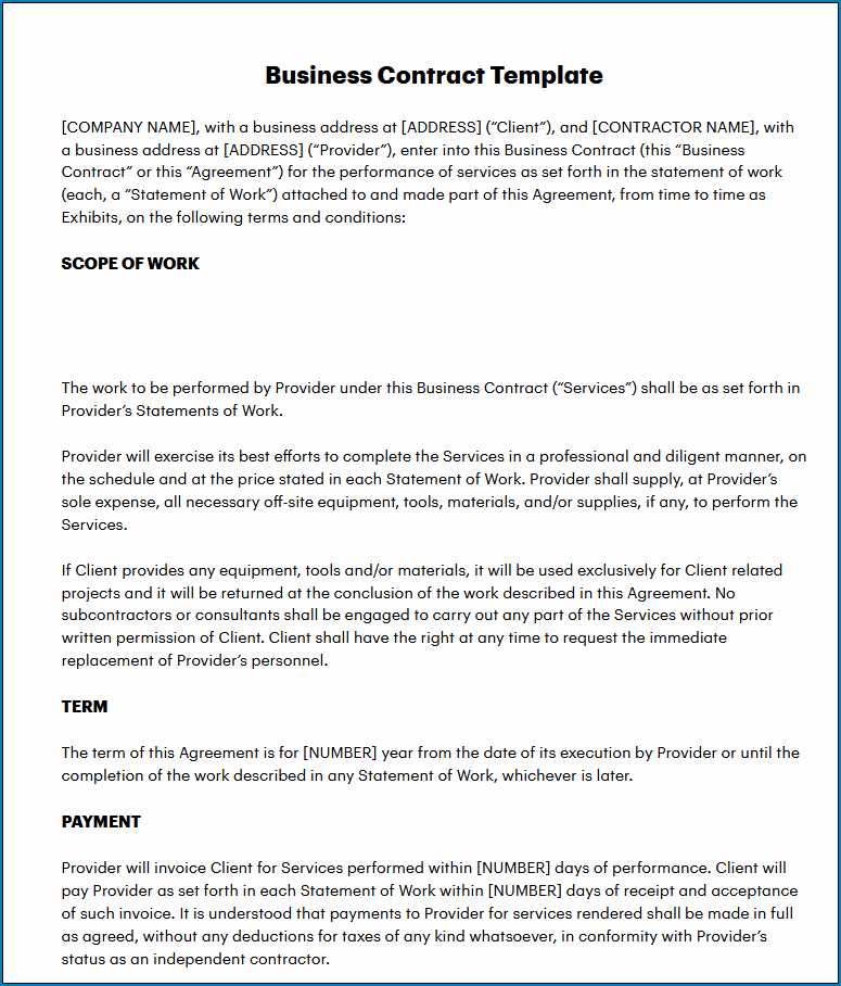Example of Business Services Contract Template