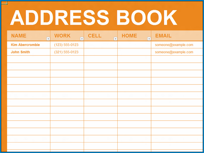 Example of Excel Address Book Template
