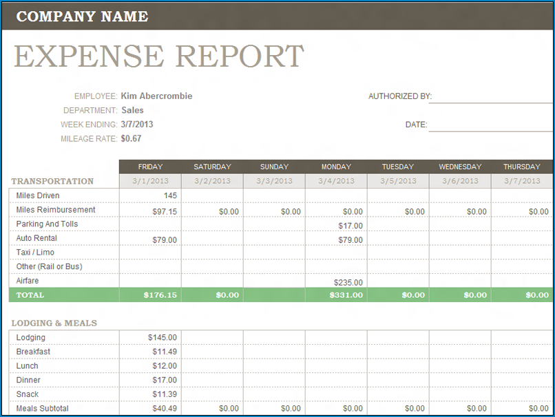 Example of Expense Report Template