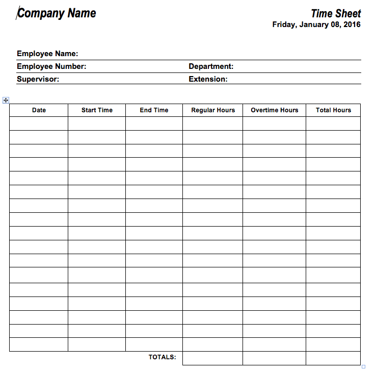 Example of Hour Timesheet Template