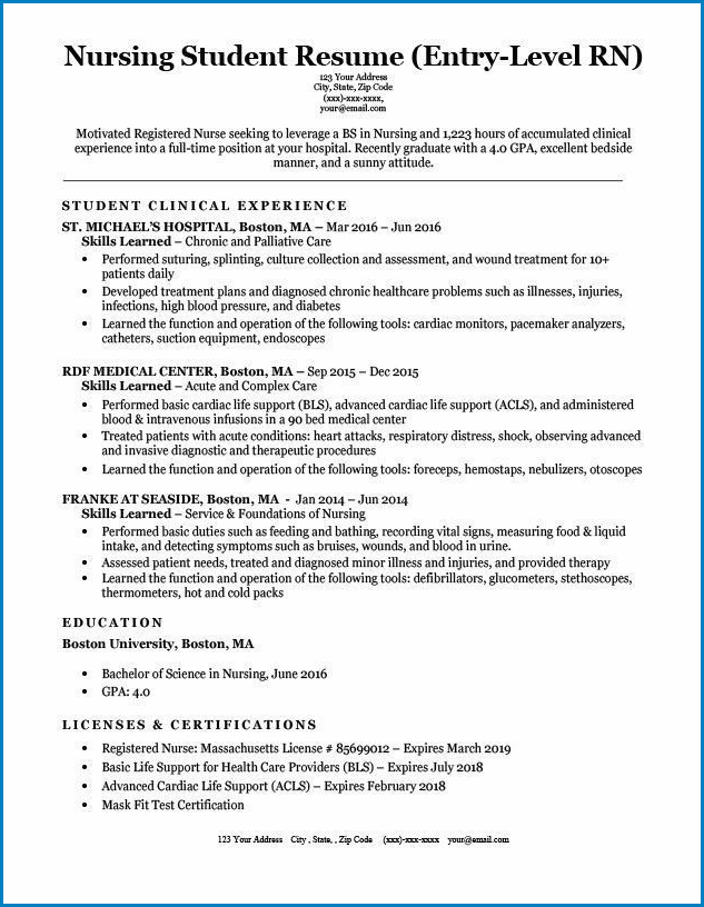 Example of Nursing Student Resume Template
