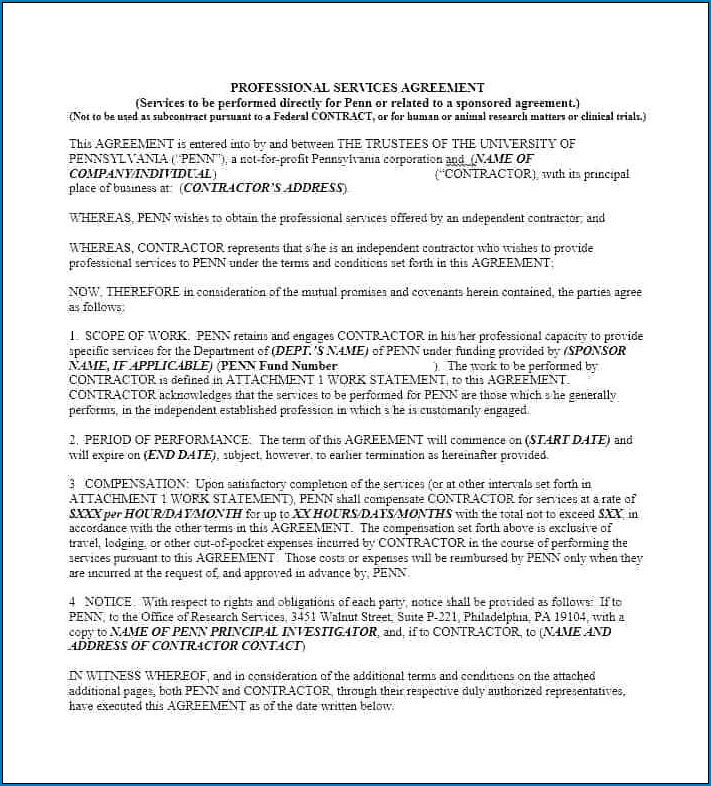 Example of Professional Services Agreement Template