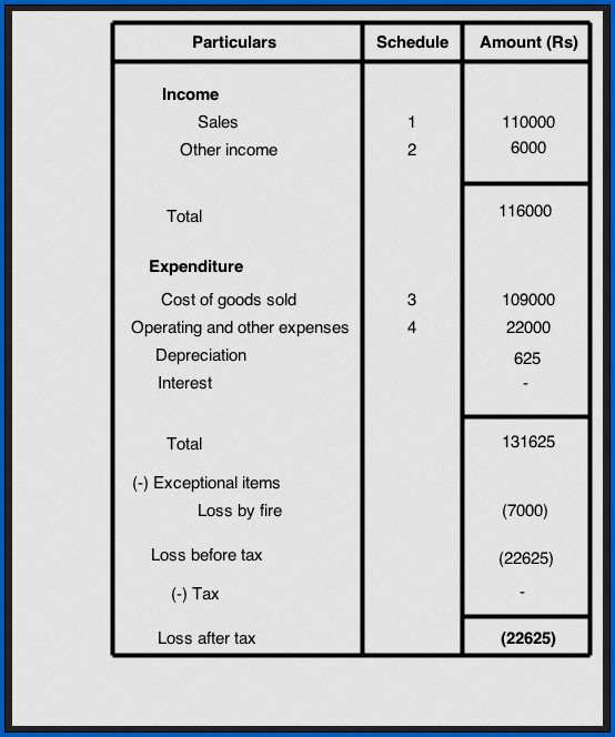 Example of Profit And Loss Statement Format