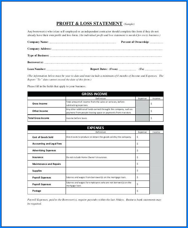 Example of Profit Loss Statement Template