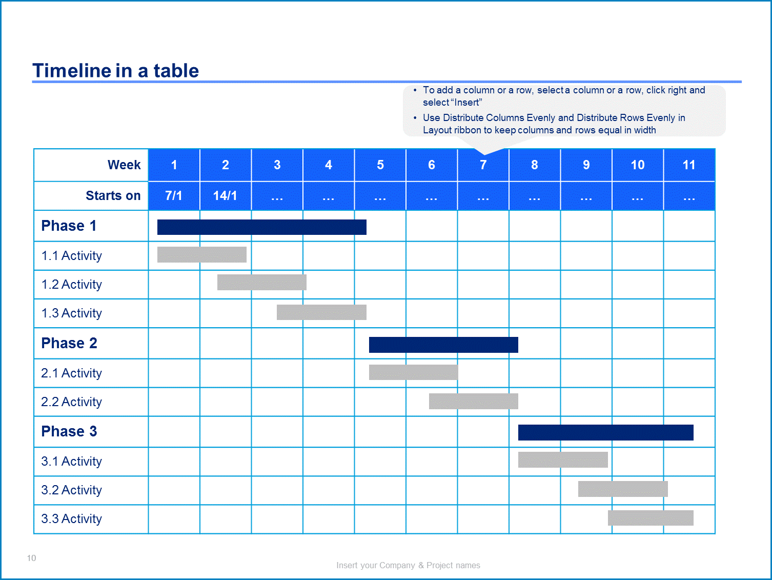 Example of Project Plan Template