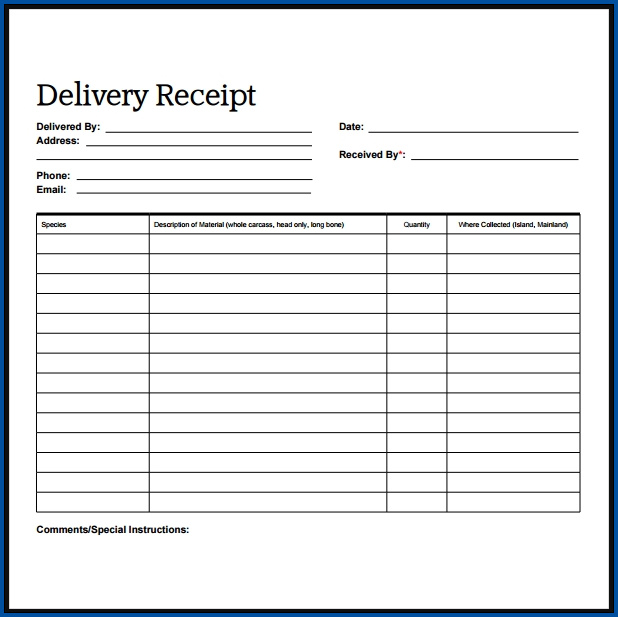 Example of Receipt For Cash Payment Template