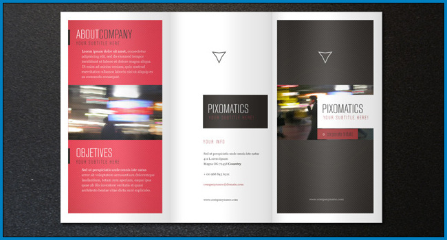 Example of Tri Fold Pamphlet Template