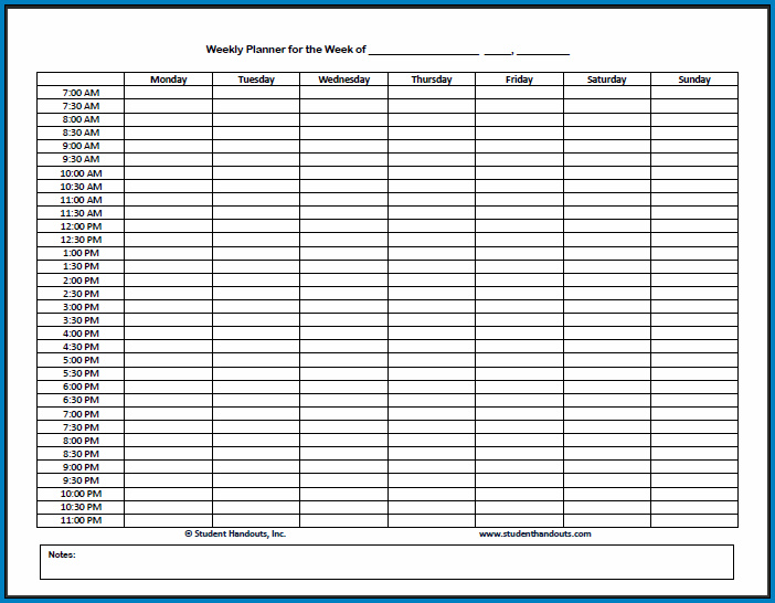Hourly Planner PDF Sample