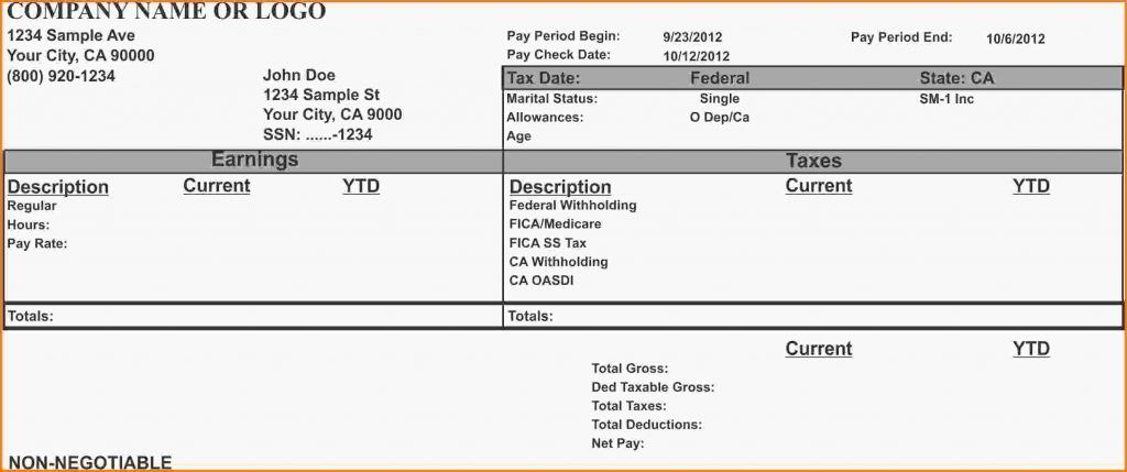 Pay Stub Template Example