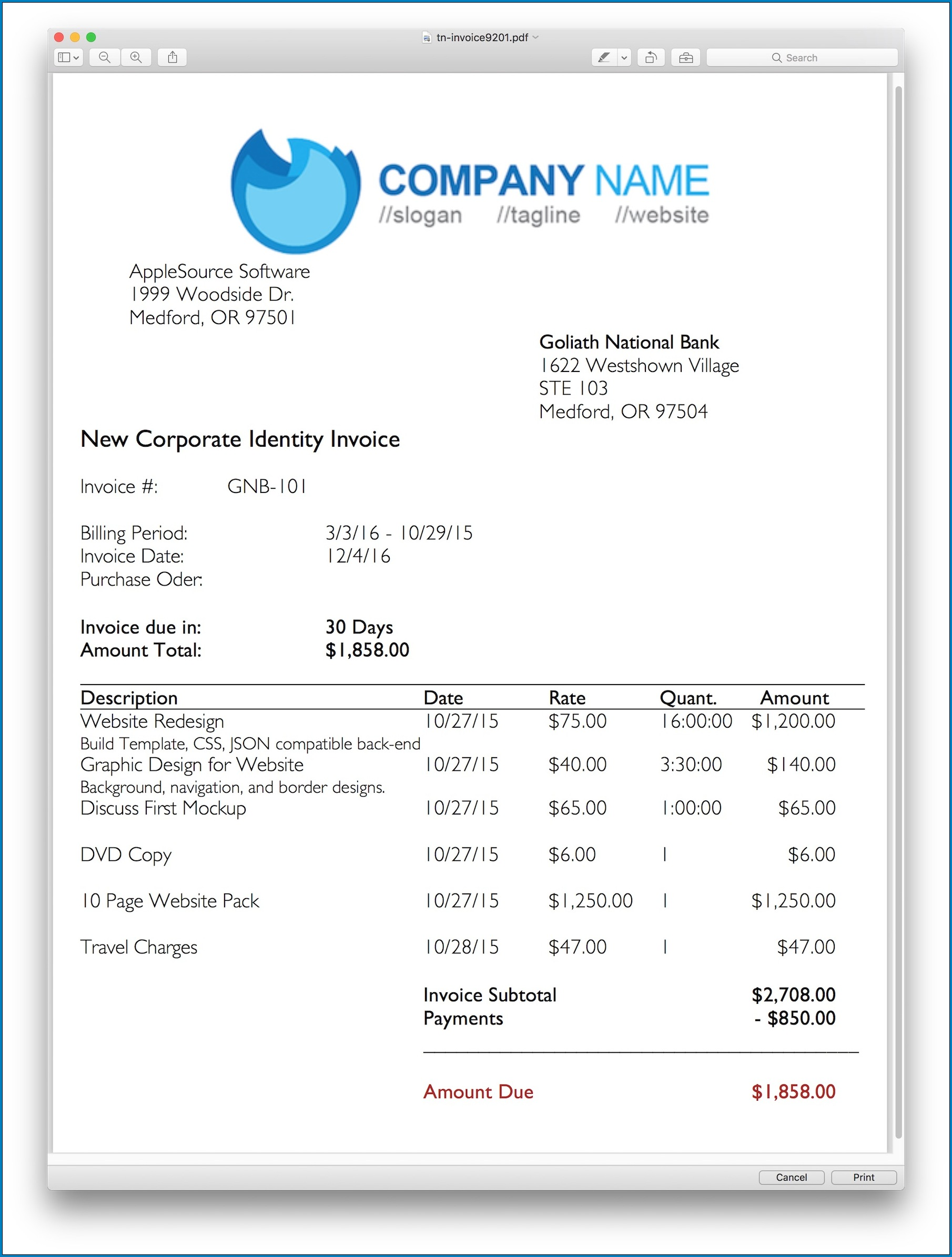 Professional Invoice Template Sample