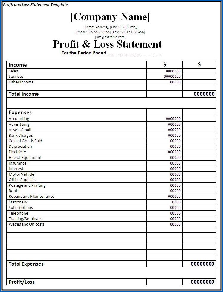 Profit And Loss Statement Sample 7