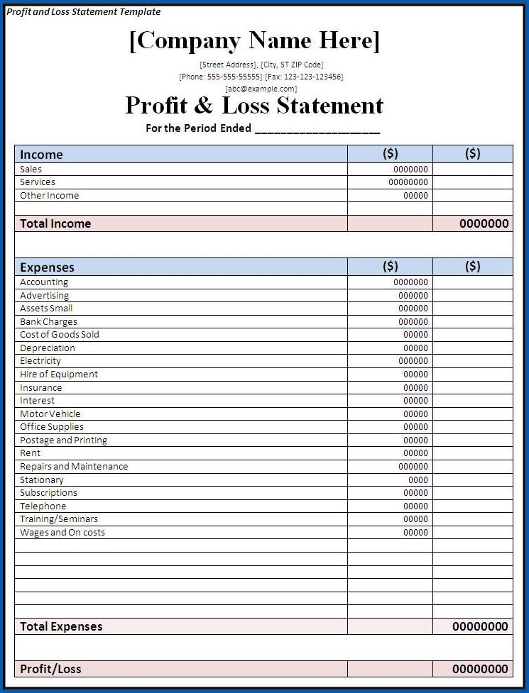 Profit And Loss Statement Sample 8