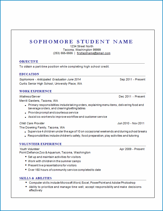 Resume Template For No Work Experience Templateral