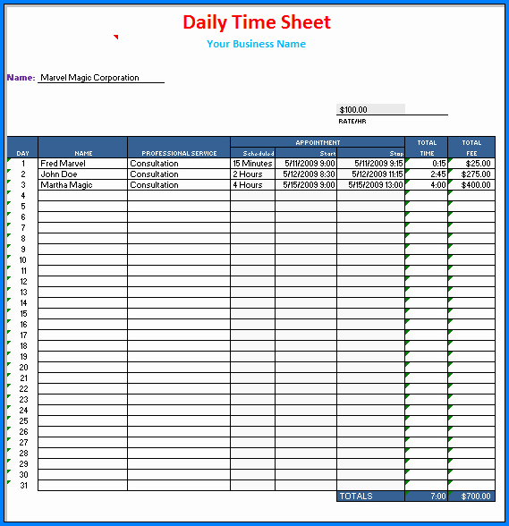 Sample of Daily Timesheet Excel Template
