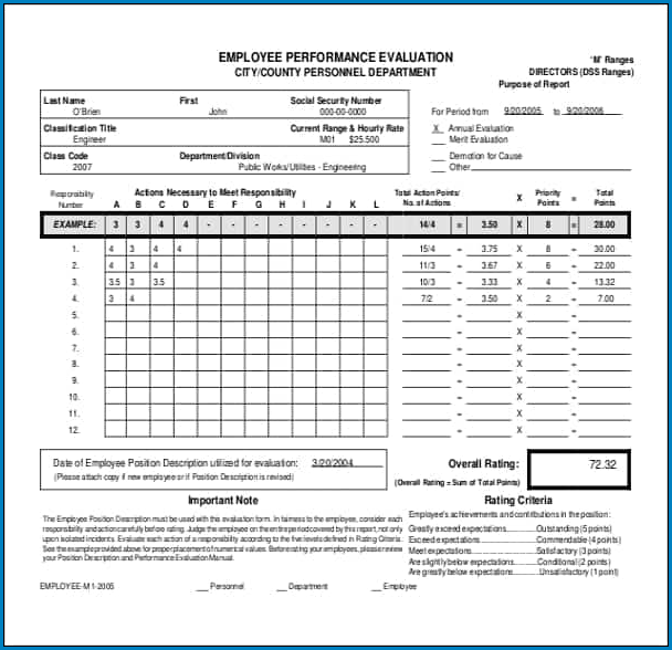 Sample of Employee Performance Review Form