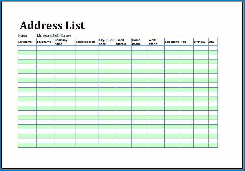 Sample of Excel Address Book Template