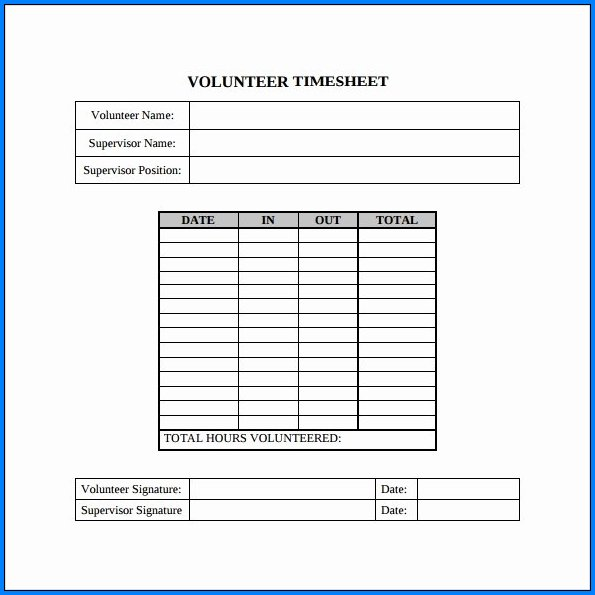 Volunteer Timesheet Template Sample