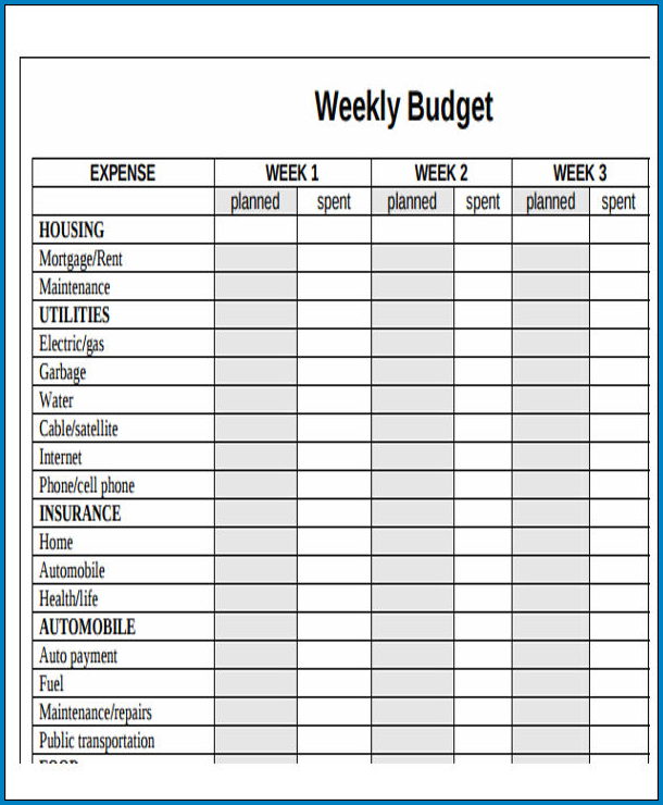 Weekly Budget Template Sample